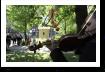 melitta honeycup, budapest event, cultural event, art nouveau budapest